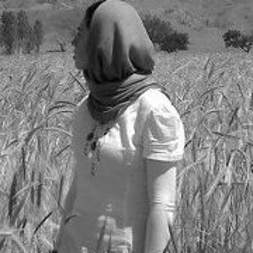 Afra Diba Panah's avatar