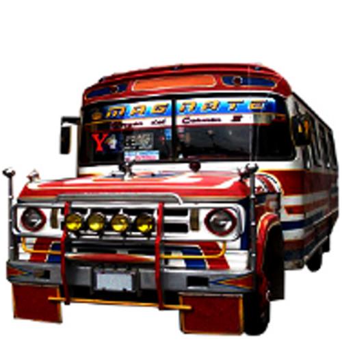 La Tirana Caravana's avatar