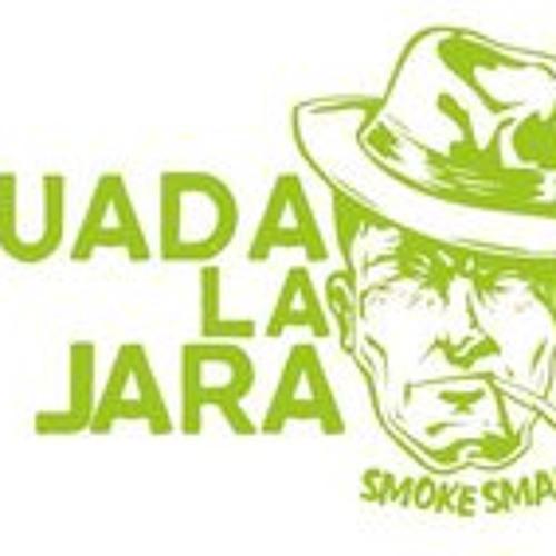 Guadalajara Pl's avatar