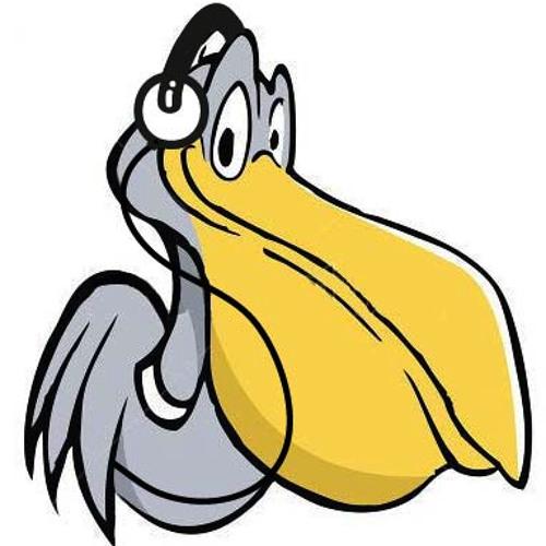 Pelican Playlist's avatar