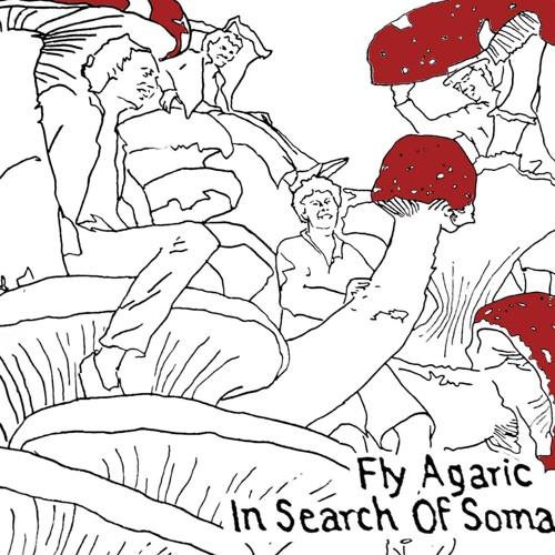 Fly Agaric's avatar