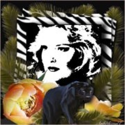 Panther Shirl Bostock's avatar