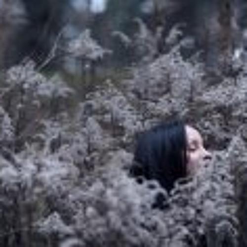 Sasha Solomkena's avatar