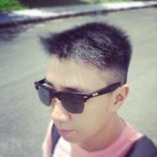 Vixu Pò's avatar
