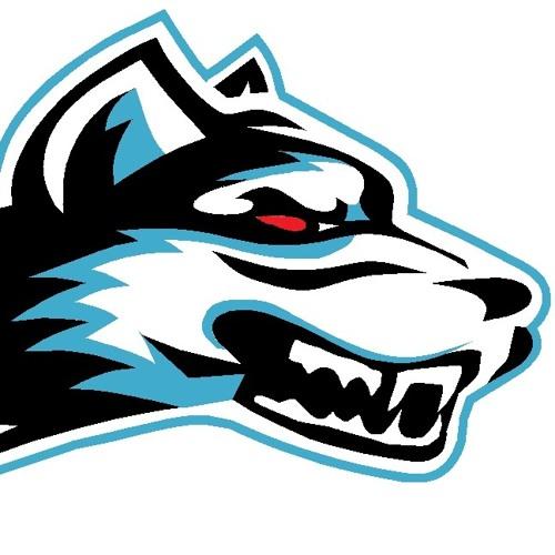 Dj Wolf Soul's avatar