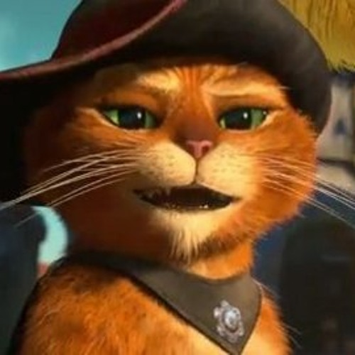 le chat potté's avatar