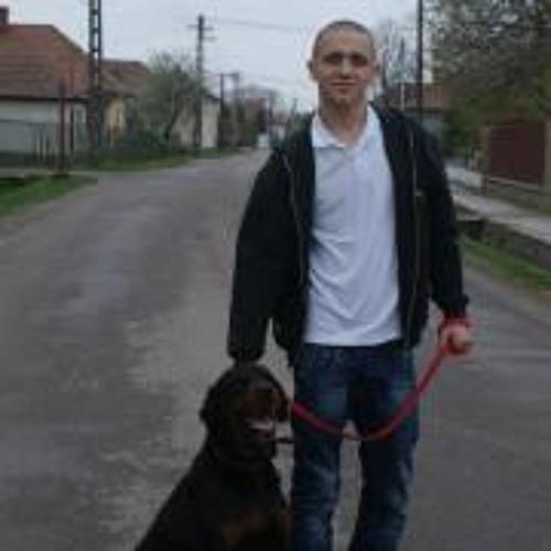 Dacz Kovacs Laszlo's avatar