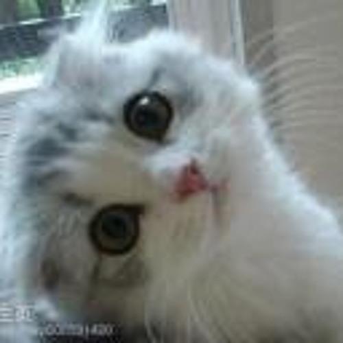 EDMcat's avatar