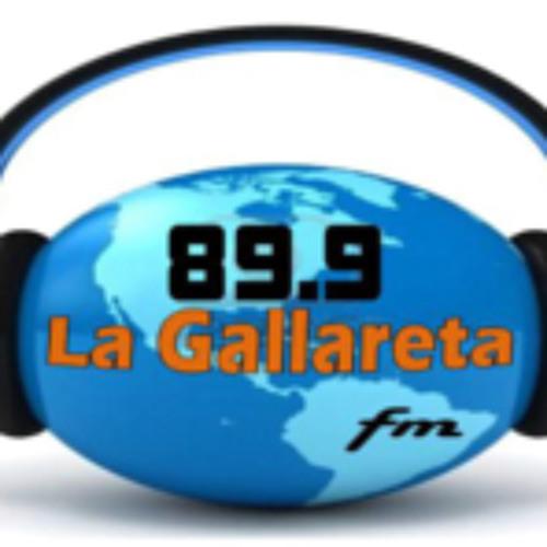 FM LA GALLARETA's avatar
