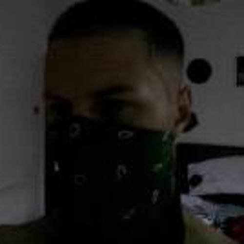 shredzzmusic's avatar