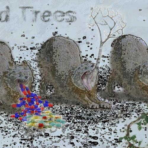 Wild Trees's avatar