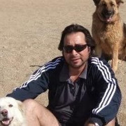Jose Luis Villalon Rojas's avatar