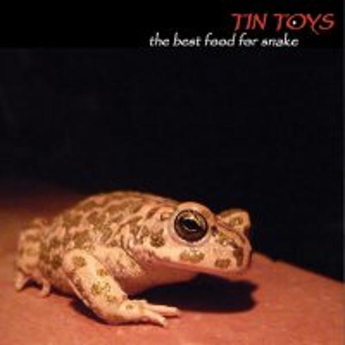 Tin Toys's avatar