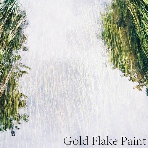 GoldFlakePaint's avatar