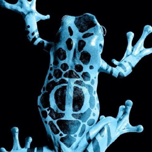 grenouille25's avatar