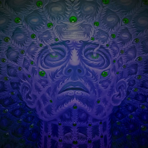 Nobodys Listening (Tryptamine)