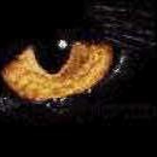 Skinartdu's avatar
