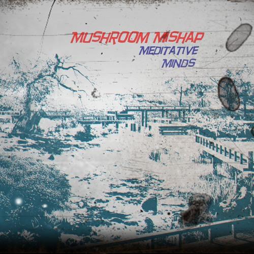 Mushroom Mishap's avatar