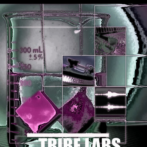 Tribe Labs's avatar