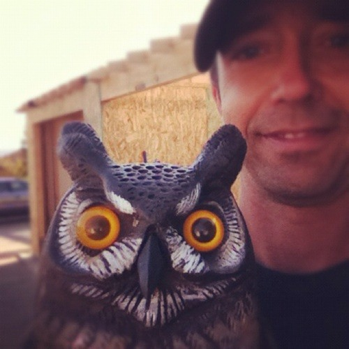 kastletomato's avatar
