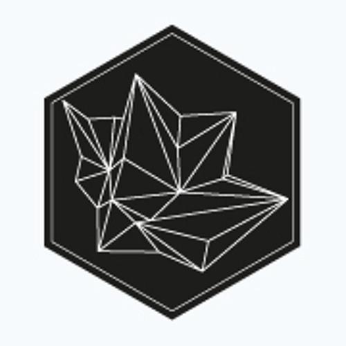 Hypnotik Shape Collectif's avatar