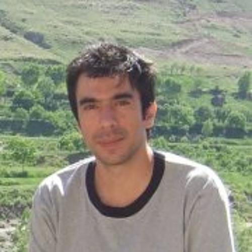 Sina Nazifi's avatar