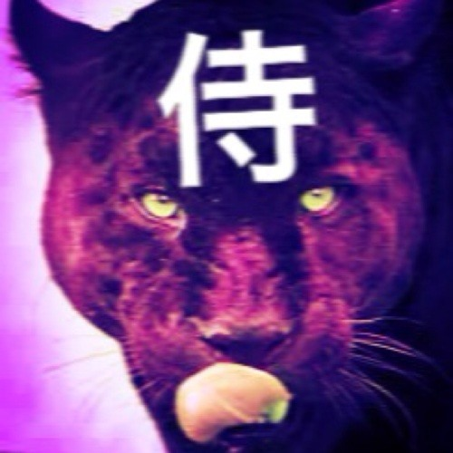blindsamurai.'s avatar