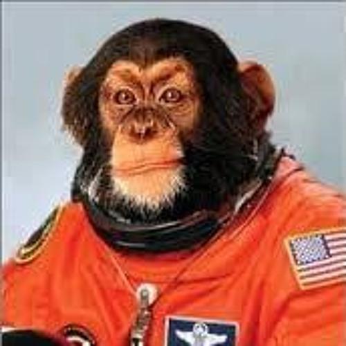 Capt Sandwich's avatar