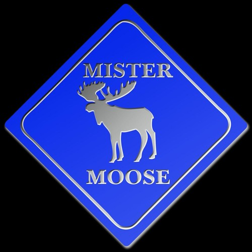 DJ  MISTER MOOSE's avatar