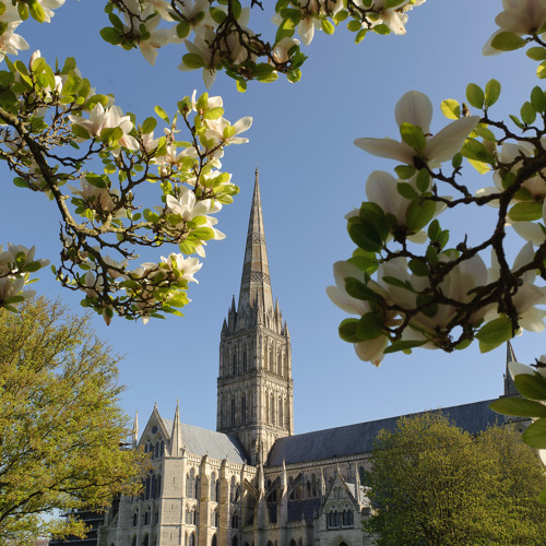 Salisbury Cathedral Choir's avatar
