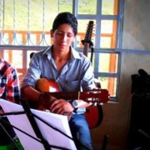 Ricardo Martinez Lamus's avatar