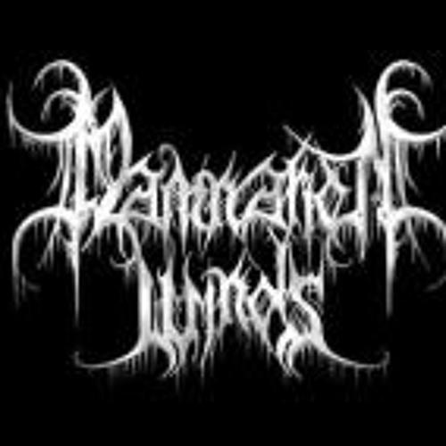 Geist Damnation Winds's avatar