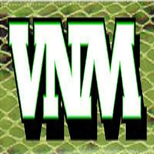 VNM Records's avatar