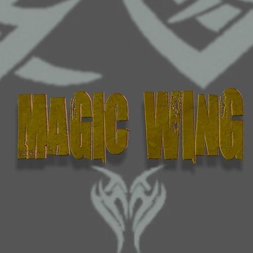 magic wing's avatar