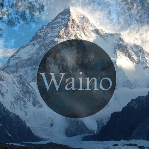 Waino's avatar