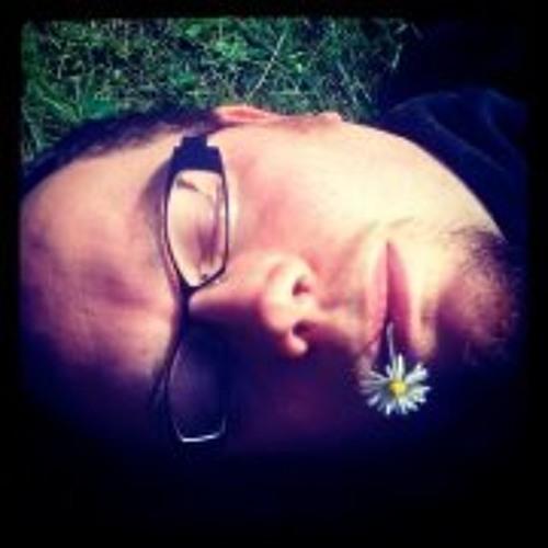 Koen Vanmeerbeek's avatar