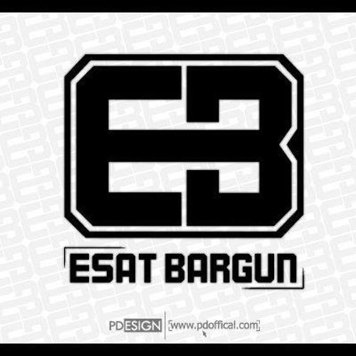 esatbargun's avatar