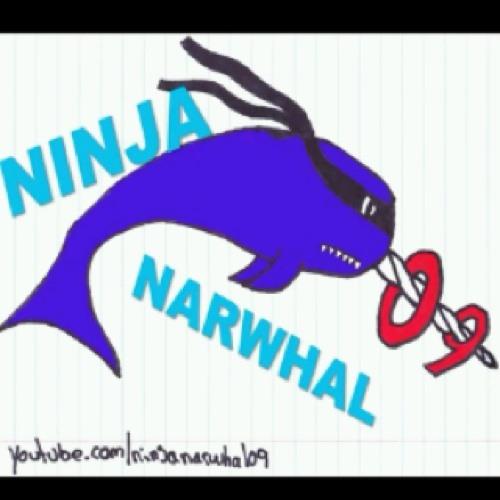 NinjaNarwhal09's avatar