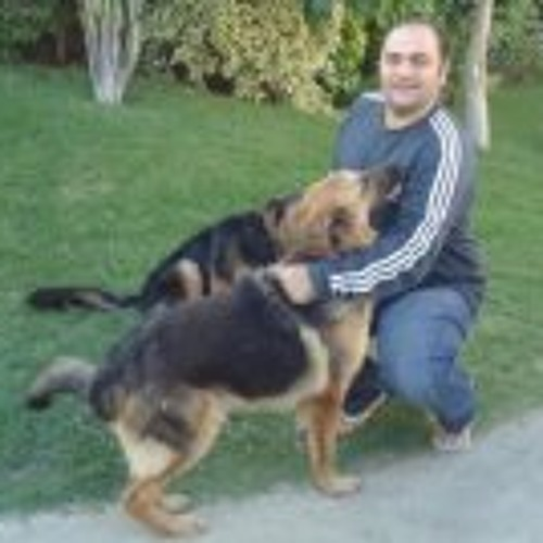 Fouad Maher's avatar