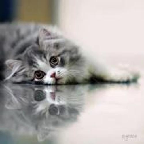 Kadir Güzel 1's avatar