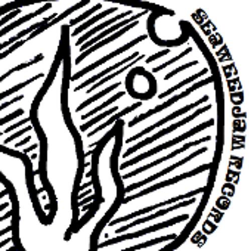 Seaweedjam Records's avatar