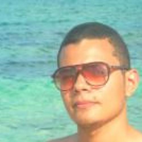 Mohamed L Hosseny 1's avatar