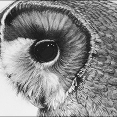 Owl Bleeder's avatar
