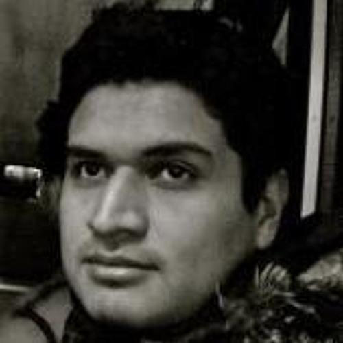 Roilhi Ibarra's avatar
