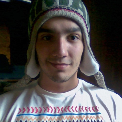 Hugo Bomtempo Furtado's avatar