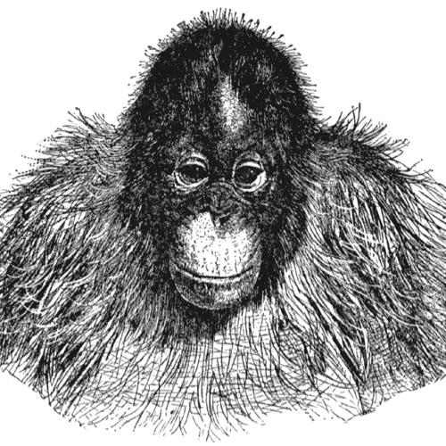 MrOrangeutan's avatar