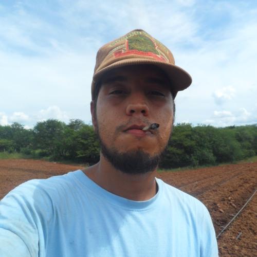 Pansophi's avatar