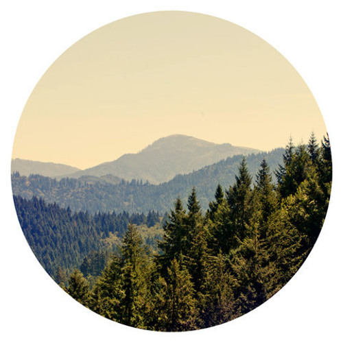 pinnacles.'s avatar