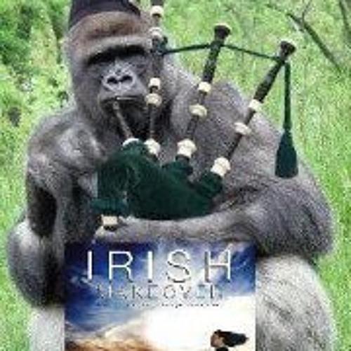 Mairtin O'Riain's avatar