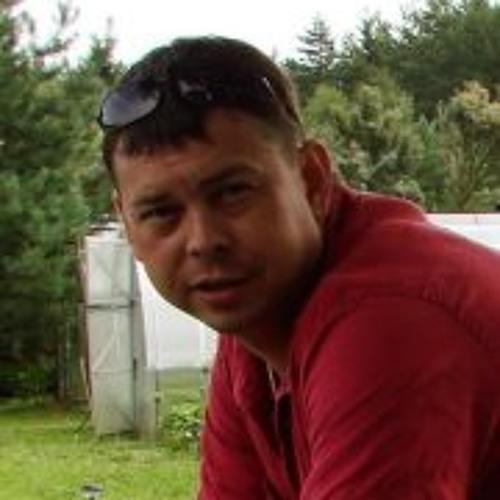 Anton  Krivosheykin's avatar